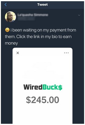 WiredBucks Fake Proof